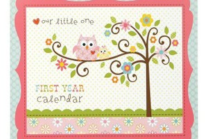 FREE Baby's First Year Calendar