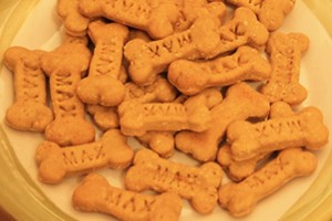 FREE Maxie Dogs Treats Samples