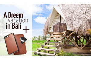 Dreem Bali Vacation or Fibonaccis Giveaway