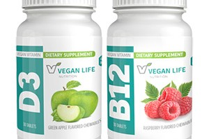 FREE Vegan Life Chewable Vitamins Sample