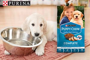 FREE Purina Puppy Chow Complete Sample