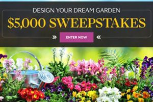 Martha Stewart $5,000 Sweepstakes