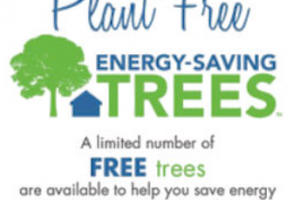 FREE Trees for Your Home For Delmarva, ACE, PEPCO Customers