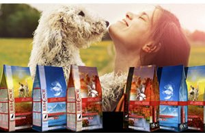 FREE Essence Dog or Cat Food Sample